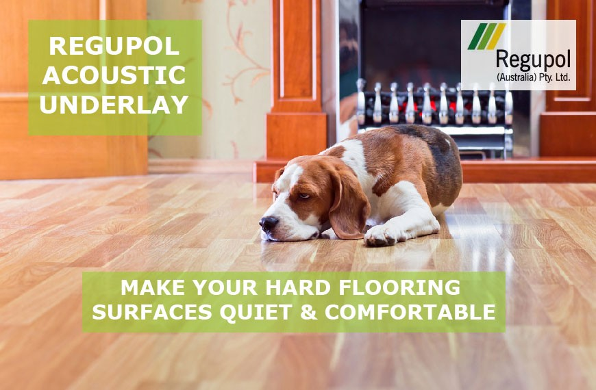 Regupol Acoustic Underlay Dog Sleeping on Floor